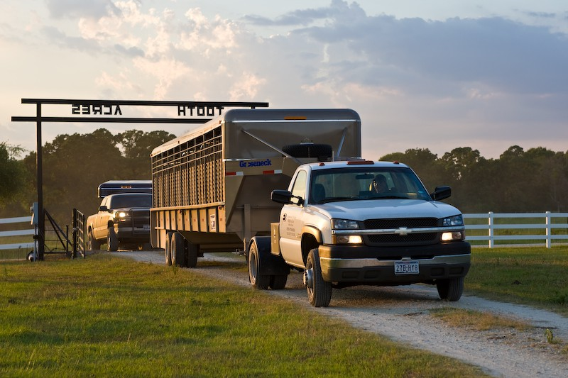 Using Ventilation Systems For Livestock Trailers By Mbj